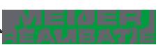 MEIJER REALISATIE Logo